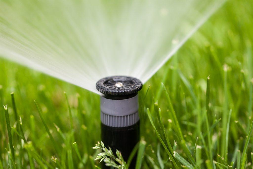 rasenflaeche bewaessern handrasenmaeher grasschnitt mehr wasserbedarf